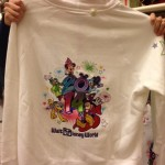 2014 disney lady sweatshirt 2