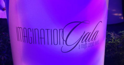 Imagination Gala Pin Event