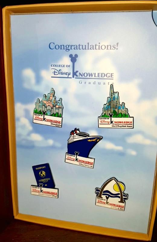 College of Disney Knowledge Pins