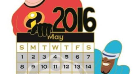 DSSH May 2016 Calendar Pin
