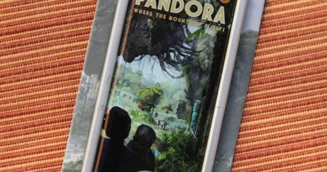 Pandora Pin 2