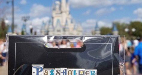 Walt Disney World Resort Passholder Pin
