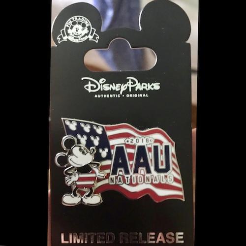 AAU Volleyball 2018 Disney Pin