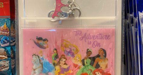 Disney Princess Lanyard Pouch