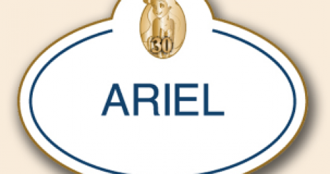 Ariel 30th Anniversary Nametag Pin