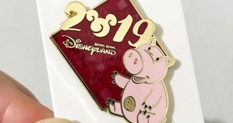 HKDL Cast Member 2019 Disney Pin