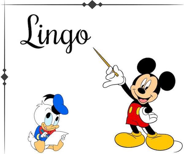 Disney Pin Trading Lingo