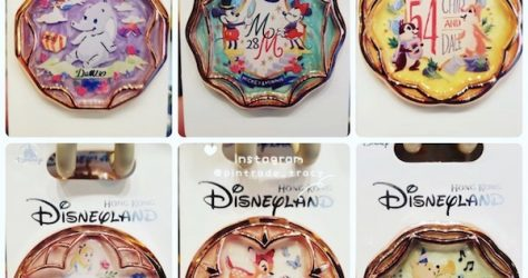 Rose Gold Circle HKDL Pins