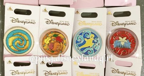 Stained Glass Princess HKDL Pins