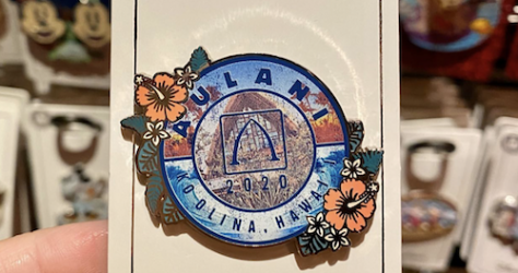 Aulani Disney Resort 2020 Pin